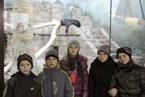 Дубовск 16.11.2013